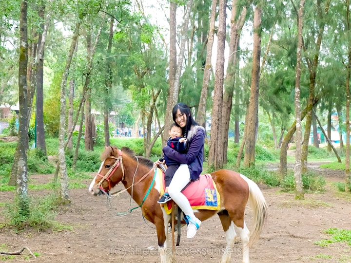 Baguio with a Toddler Horseback Wright Park