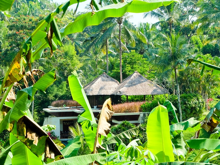 Four Seasons Sayan Balinese Farmer 12-min