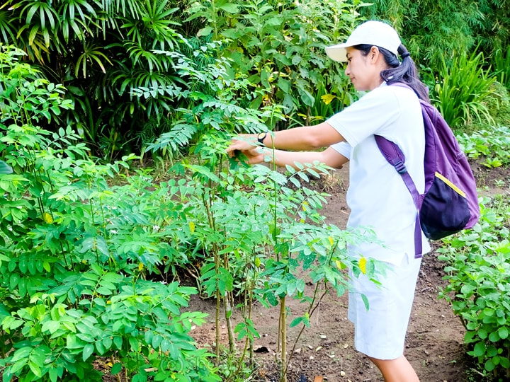 Four Seasons Sayan Balinese Farmer 29-min