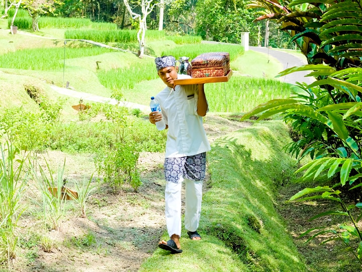 Four Seasons Sayan Balinese Farmer 9-min