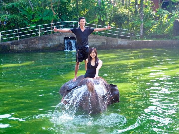 Elephant Safari Park Lodge Bali 20-min