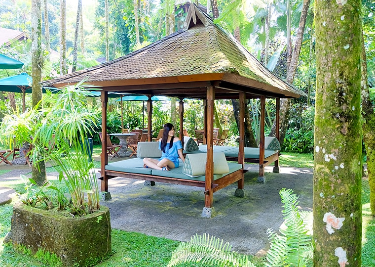 Elephant Safari Park Lodge Bali 29-min