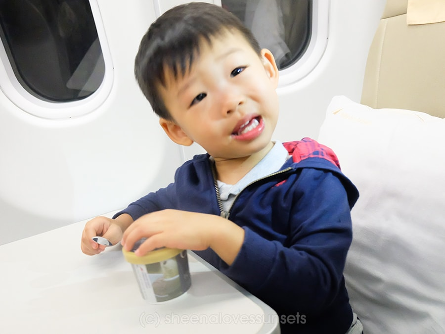 Philippine Airlines Business Class 15-min