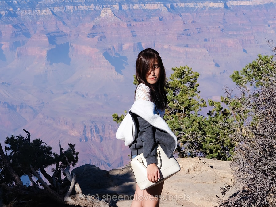 Grand Canyon South Rim Day Trip from Las Vegas