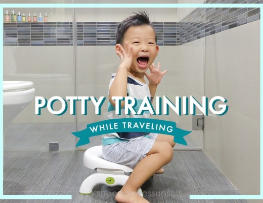Potty Training Traveling 1-min (1)